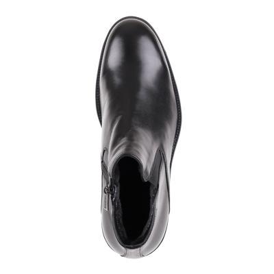 Ботинки Baldinini T0249